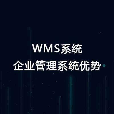 wms仓库管理系统优势?这七大优点你知道吗